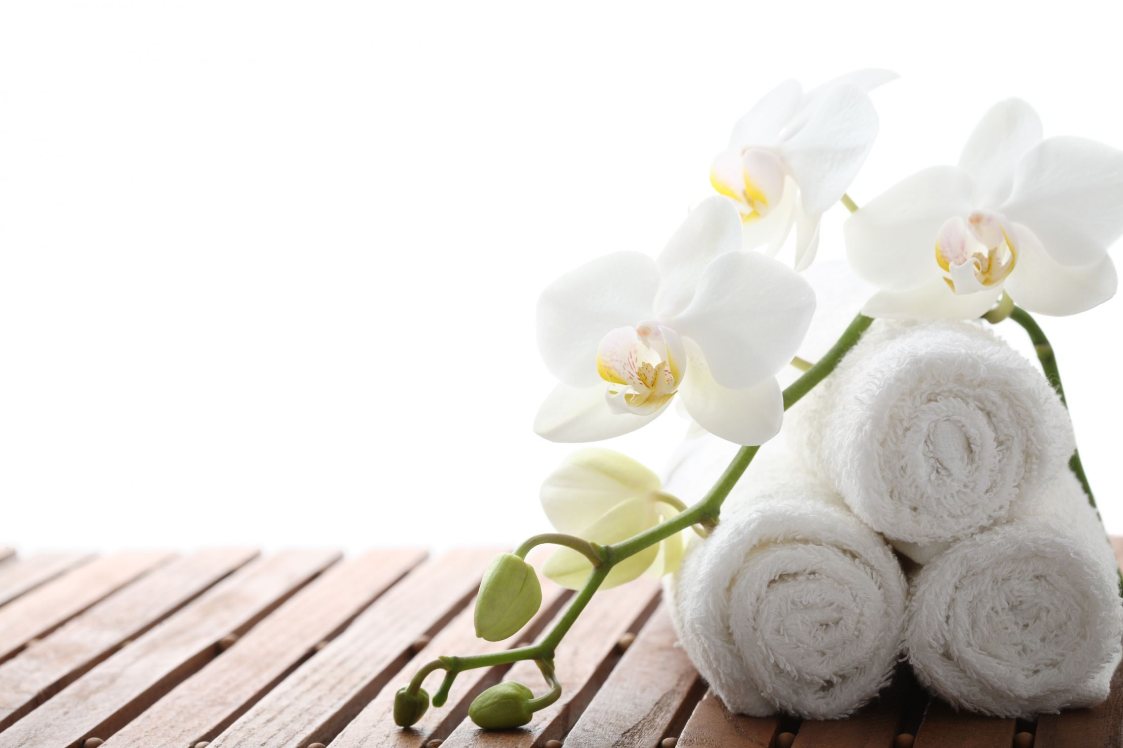 Home Shop Plans Spa Specials At The Spa At Old Mill Toronto Luxury Spa